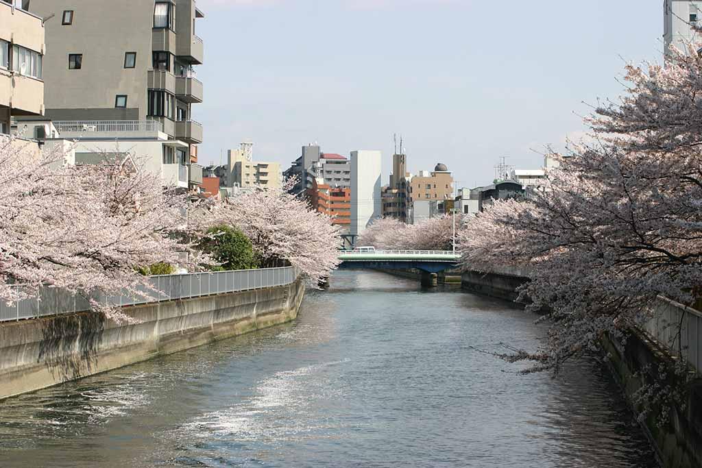 海辺橋付近の仙台堀川02